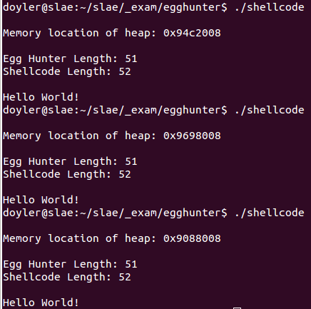 Egg Hunter Shellcode - Execution