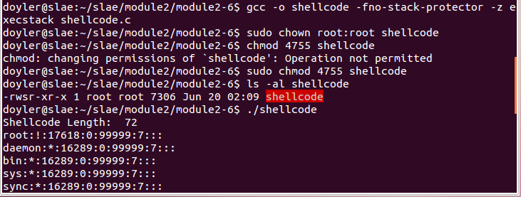 Execve Shellcode - Final Execution
