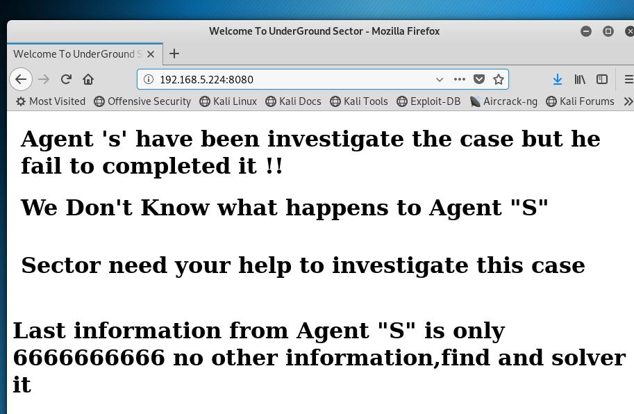 Port 8080 investigator