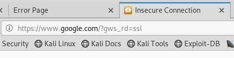 Referer XSS - Google